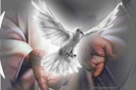 Pentecostés, Una Nueva Efusión del Espíritu Santo
