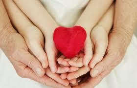 Vida en el Amor